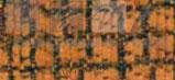 COJIN ANGEL color 05 50 x 50 cm con relleno