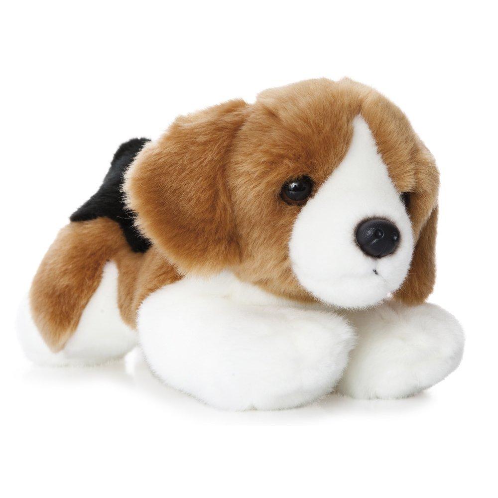 Perro Beagle blanco/marrón/negro