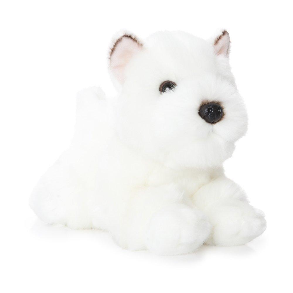 Perro Westie blanco