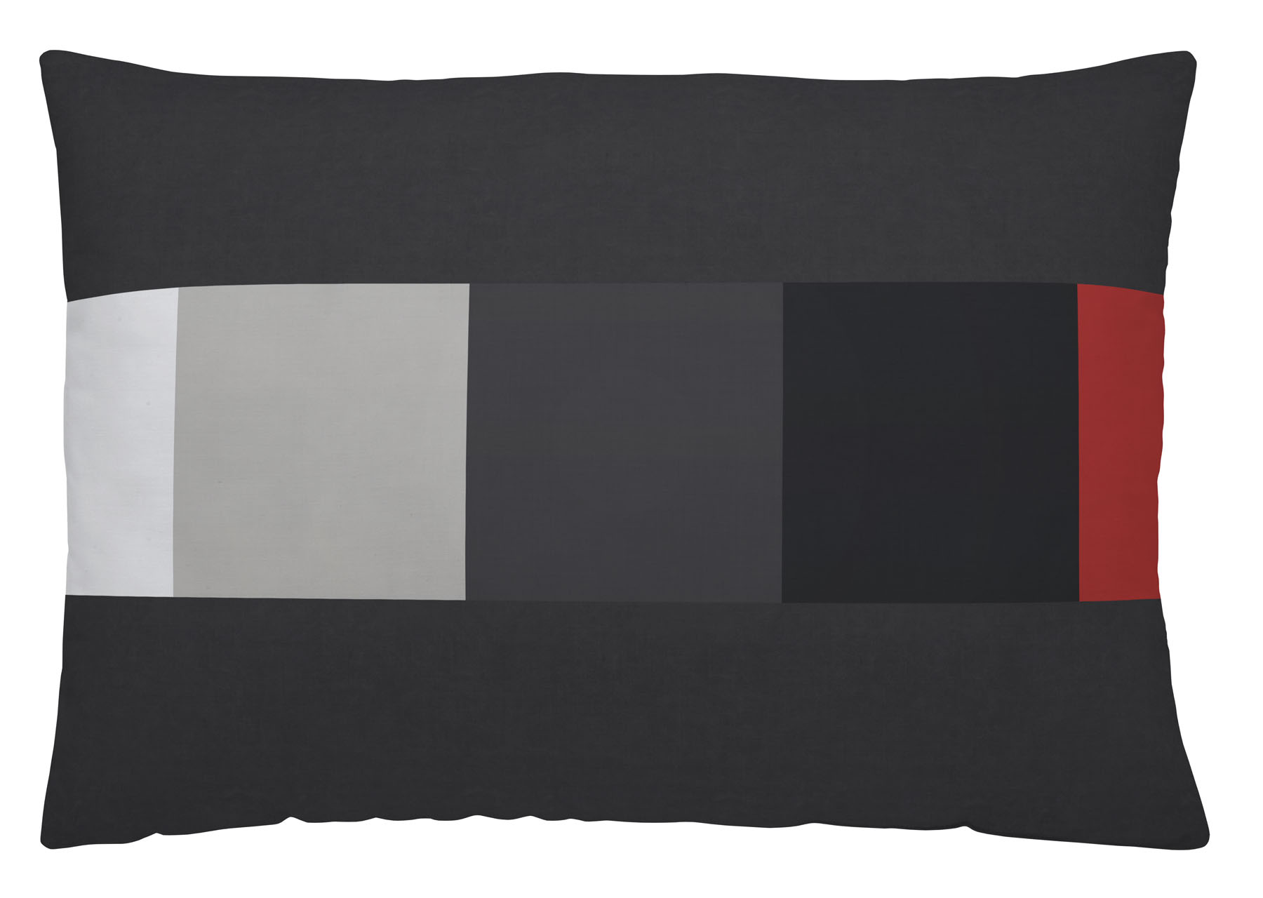 COJIN REVERSIBLE SCALE 30x50cm-sin relleno